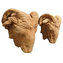 Pair of Terra Cotta Ram's Heads from France