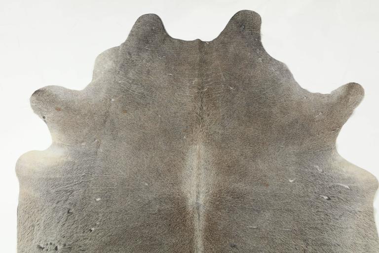Contemporary Gray Brazilian Cowhide Rug, 2016 6