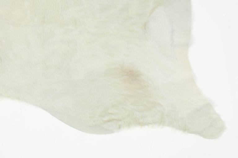 This contemporary white Brazilian cowhide rug is made of 100% natural materials. Their tanneries are ISO-9001 certified for quality and ISO 14001 certified for low environmental impact which is what gives them their gold star rating from Leather