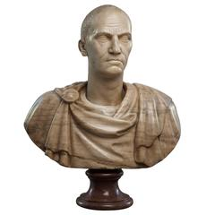 "19th Century Marble Bust, ""Roman Emperor"""