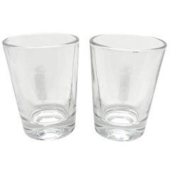 Pair of Italian Republic Military Glasses