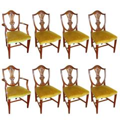 Set of Eight Hand-Carved Mahogany Hepplewhite Style Shieldback Dining Chairs