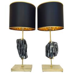 Pair of Lamps Orthoceras Fossil and Brass. Contemporary. Italy. 2016