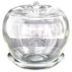 Elsa Petretti for Tiffany Large Glass Apple Jar with Lid and Dish