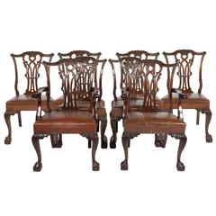 Eight Chippendale Style Dining Chairs, 19th Century
