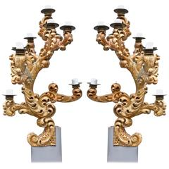 Pair of Monumental 18th Century Italian Giltwood Sconces or Candelabra