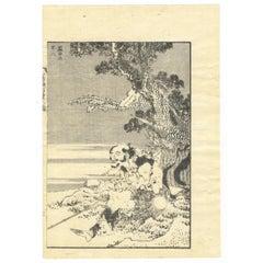 Katsushika Hokusai Ukiyo-E Japanese Woodblock Print 100 Views of Mt. Fuji