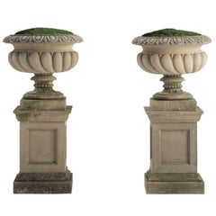 Pair of Concrete Westonbirt Urns with Pedestals, circa 1975