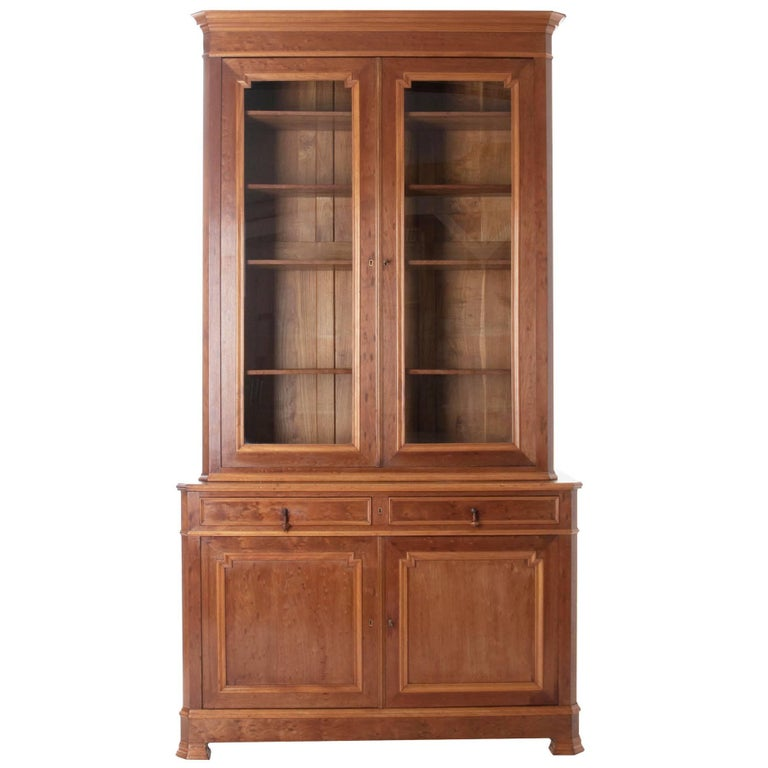 French Louis Philippe Style 19th Century Bibliotheque For Sale