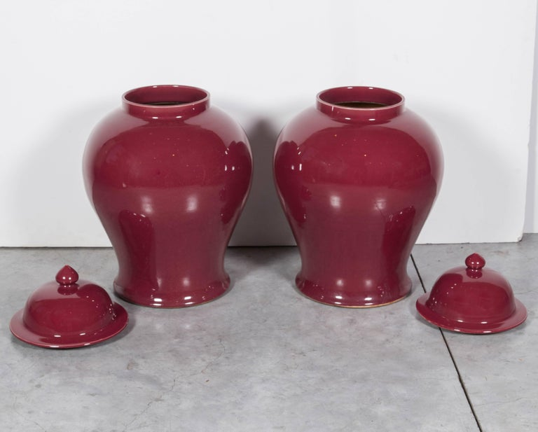 Tall Contemporary Chinese Baluster Jars For Sale 1