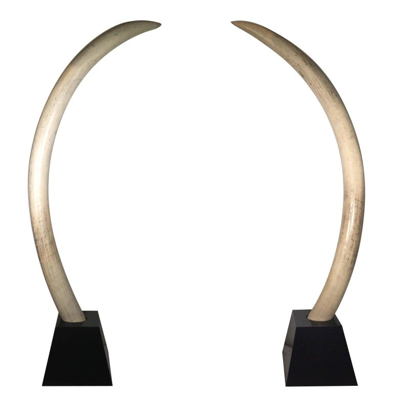 Pair of Mid-Century Monumental Faux Elephant Tusks, circa 1960s-1970s