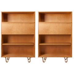 Midcentury Bookcases slash Writing Desks BB02 by Cees Braakman for Pastoe