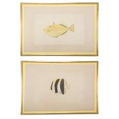 La Roche Laffitte Hand-Painted Fish on Silk