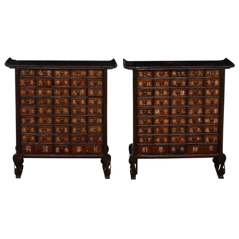 Pair of 19th Century Qing Dynasty Apothecary Cabinets or Chests  For Sale