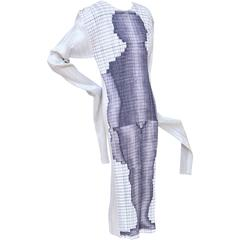 Collector's  Issey Miyake Dress Guest Artist Series No. 3 Tim Hawkinson New