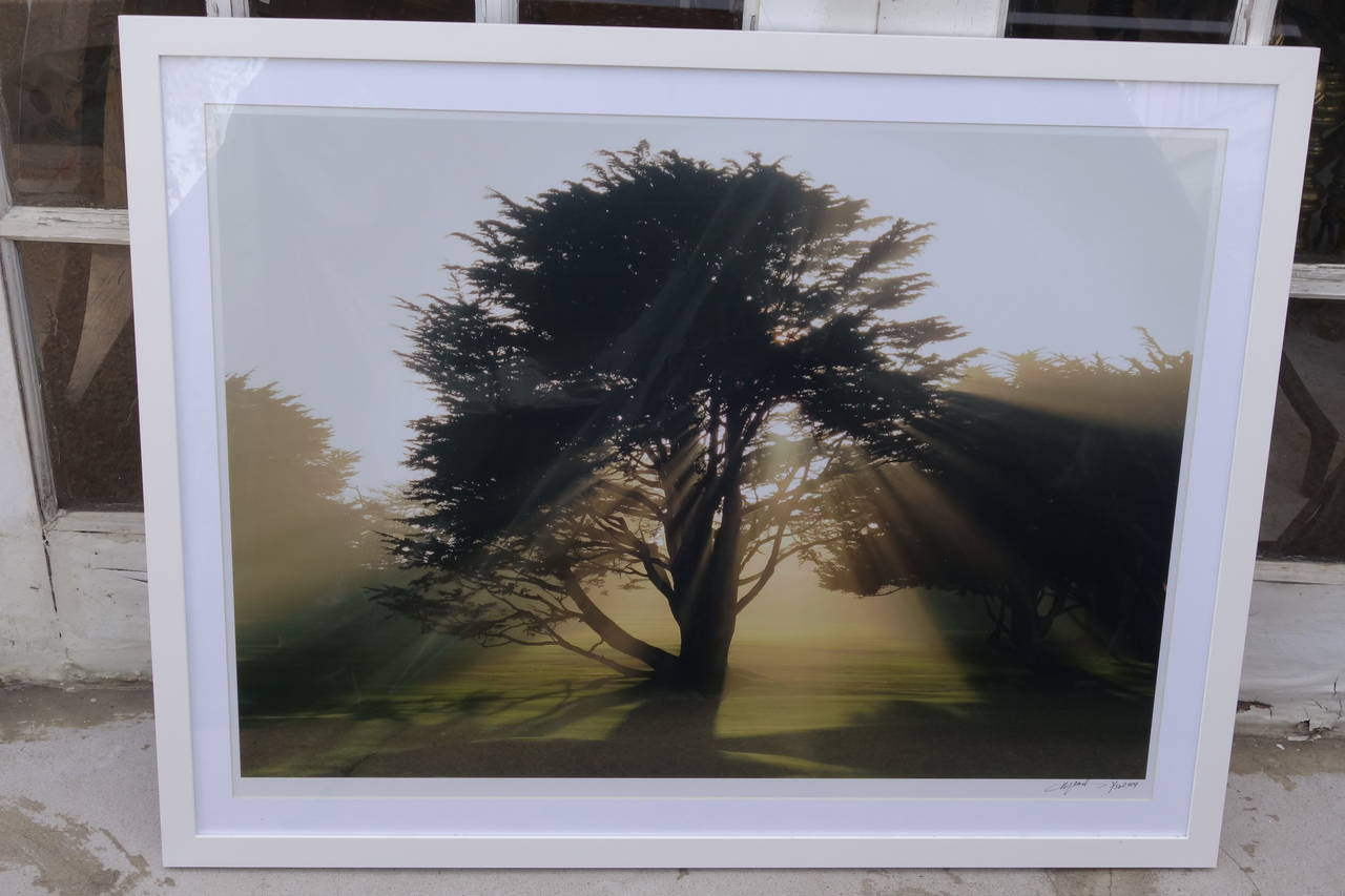 Limited Edition Print In Excellent Condition For Sale In Bridgehampton, NY
