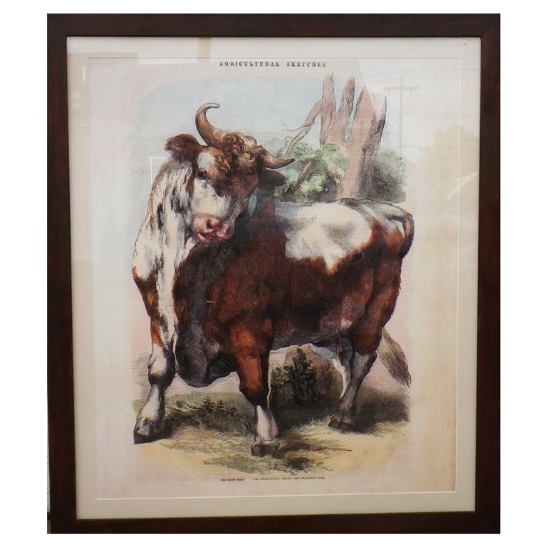 Limited Edition Agricultural Print For Sale