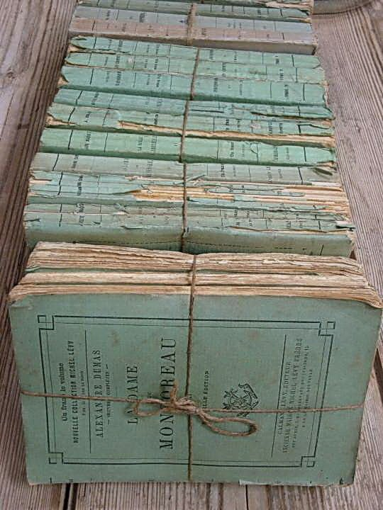 19th C French Paperback Books 1