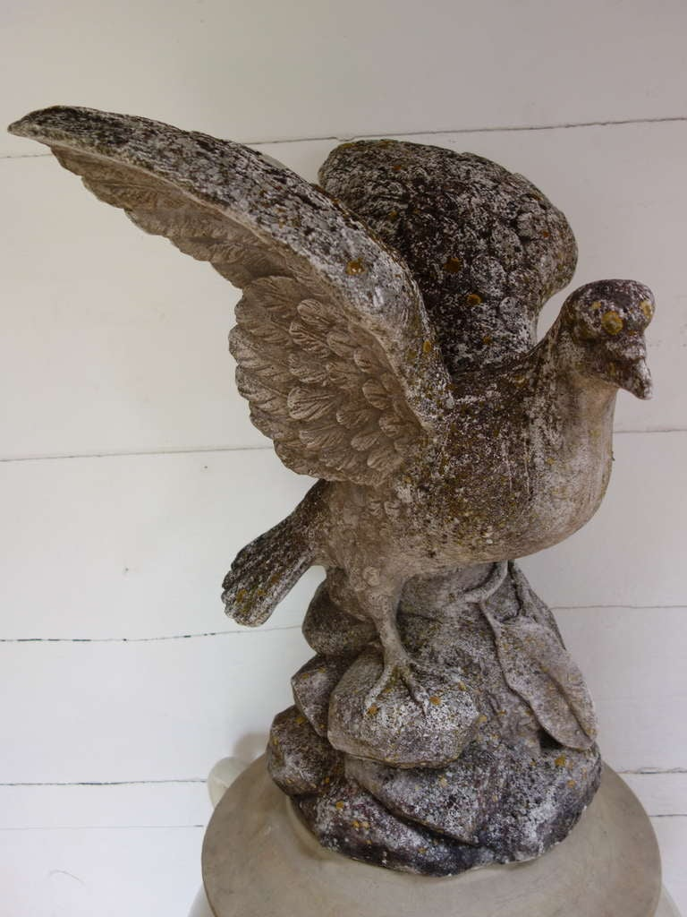 Dove Sculpture For Sale At 1stdibs