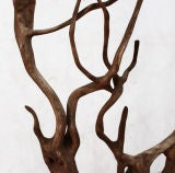 Large Driftwood Sculpture image 2