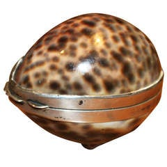 A rare and fine Gucci silver mounted cowrie shell box