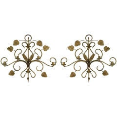 Pair of Late 19th Century Large Scale Foliate Candle Sconces