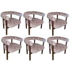 Six Large Wenge Modernist Armchairs