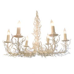 """""""Coral"""" Chandelier"""