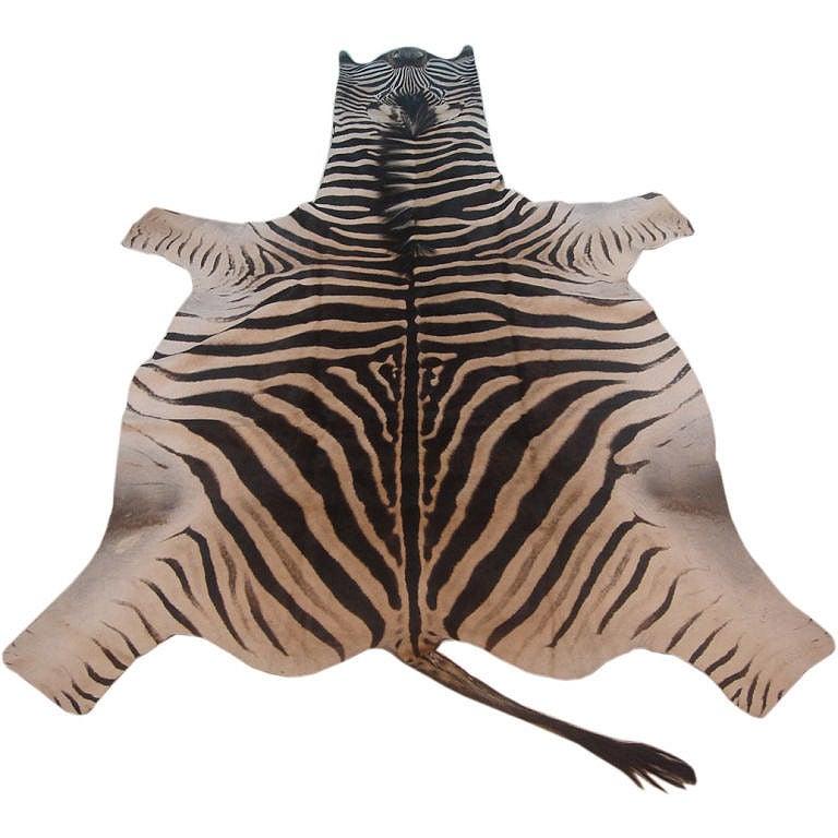 Vintage Zebra Skin Rug At 1stdibs