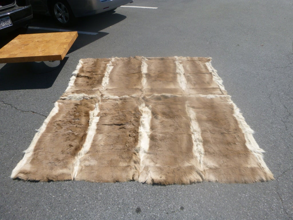 Antelope fur hide rug at 1stdibs Antelope pattern carpet