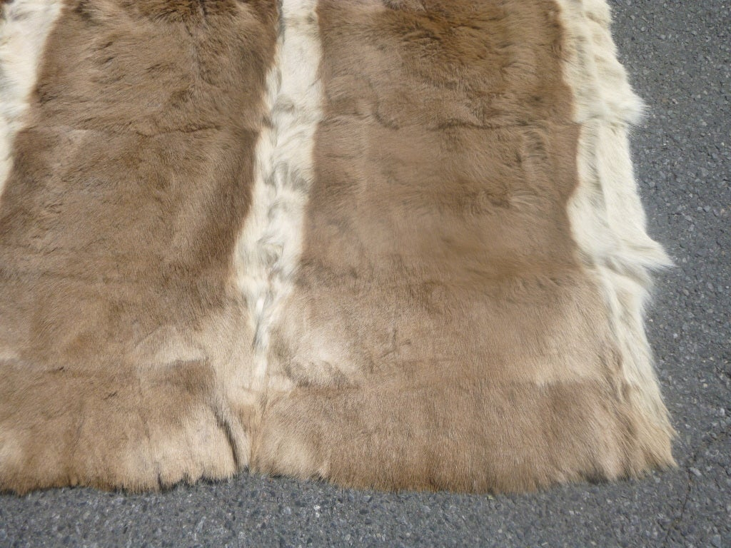 Antelope Fur Hide Rug At 1stdibs