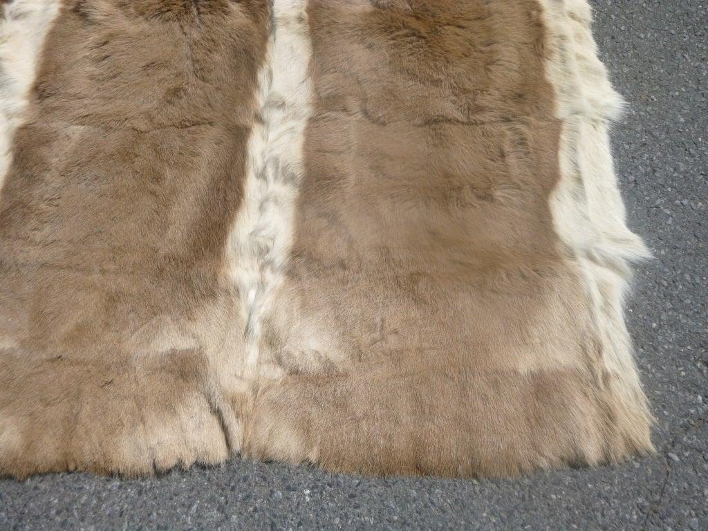 antelope fur hide rug at 1stdibs