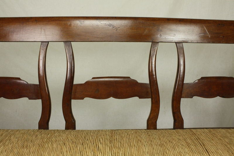 19th Century Antique Carved French Walnut Bench, Rush Seat For Sale