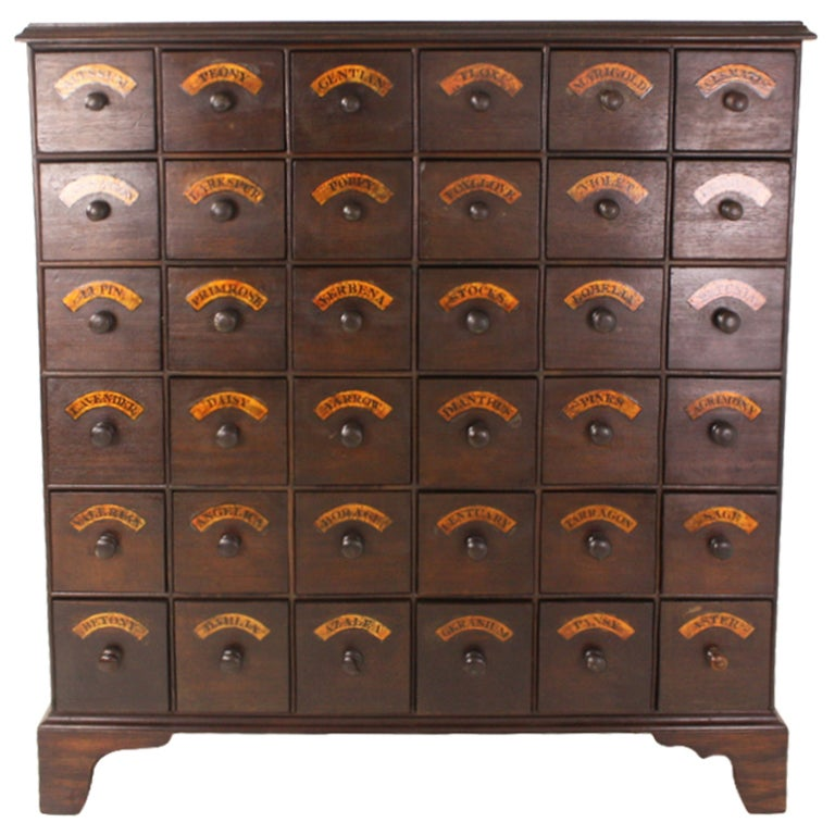 Tall Antique English Bank of Flower Seed Drawers at 1stdibs