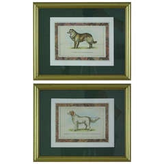 Pair of English Antique Hand-Colored Dog Prints