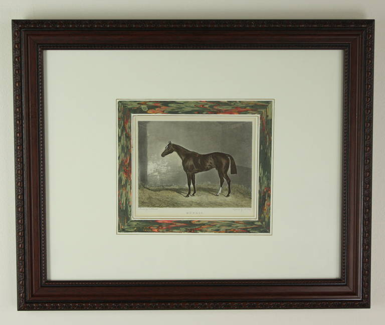 Pair Of English Hand-colored Antique Horse Engravings For Sale at ...