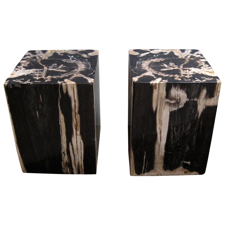 pair petrified wood stools side tables at 1stdibs