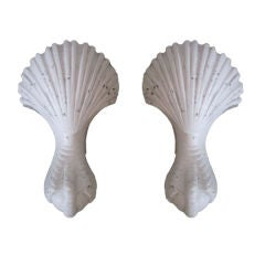 Pair of French 1930s Shell and Talon Sconces