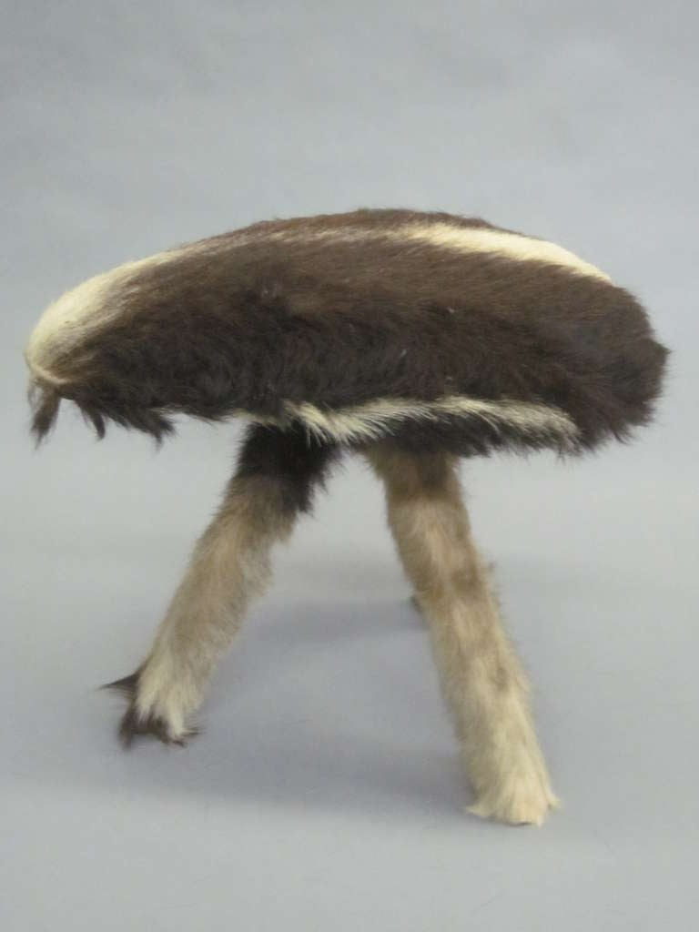 Mid-20th Century Pair of French Mid-Century Stools in Goat Skin For Sale