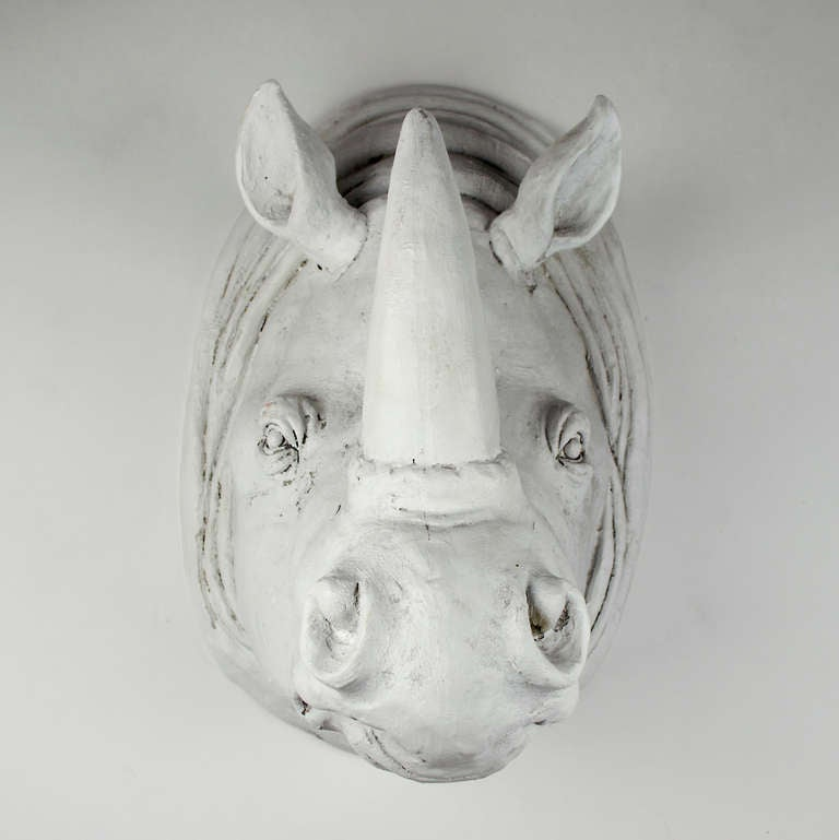 Plaster Rhinoceros Head At 1stdibs