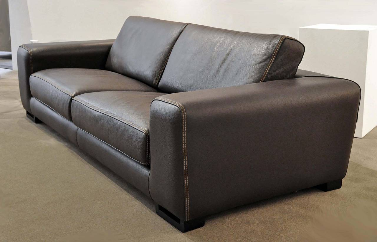 Chocolat Straight Sofa Upholstered In Solid Alpilles Leather 2 Mm Thick Modern Roche Bobois