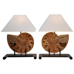 Large Pair of Fossil and Iron Lamps with Custom Shades
