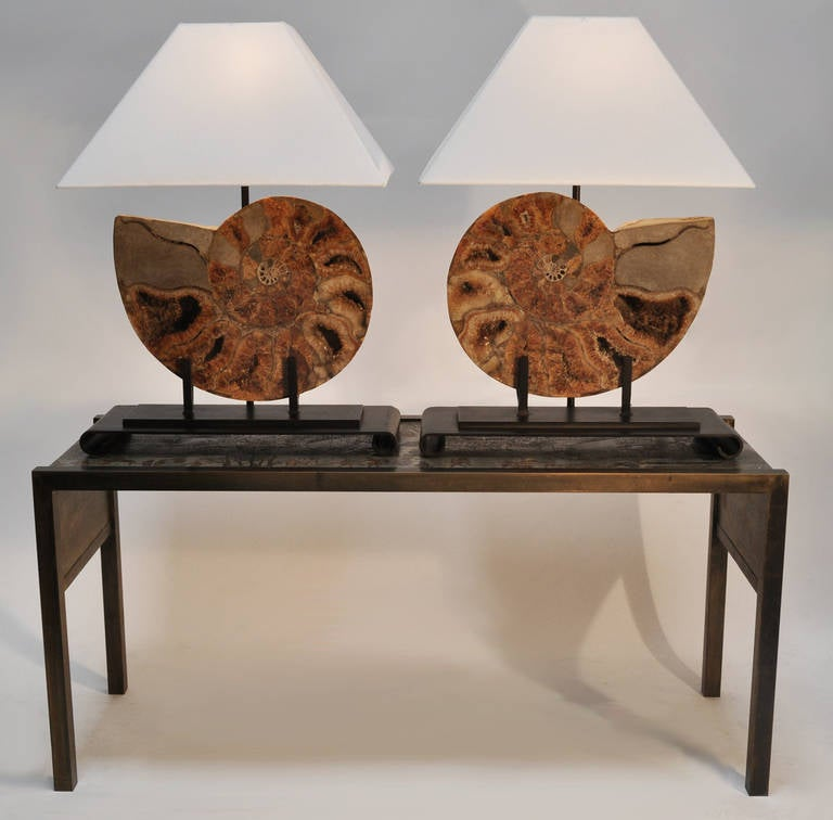 Modern Pair of Table Lamps Made with Fossils For Sale