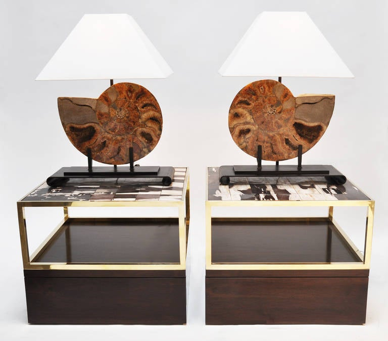 Pair of Table Lamps Made with Fossils In Excellent Condition For Sale In Los Angeles, CA