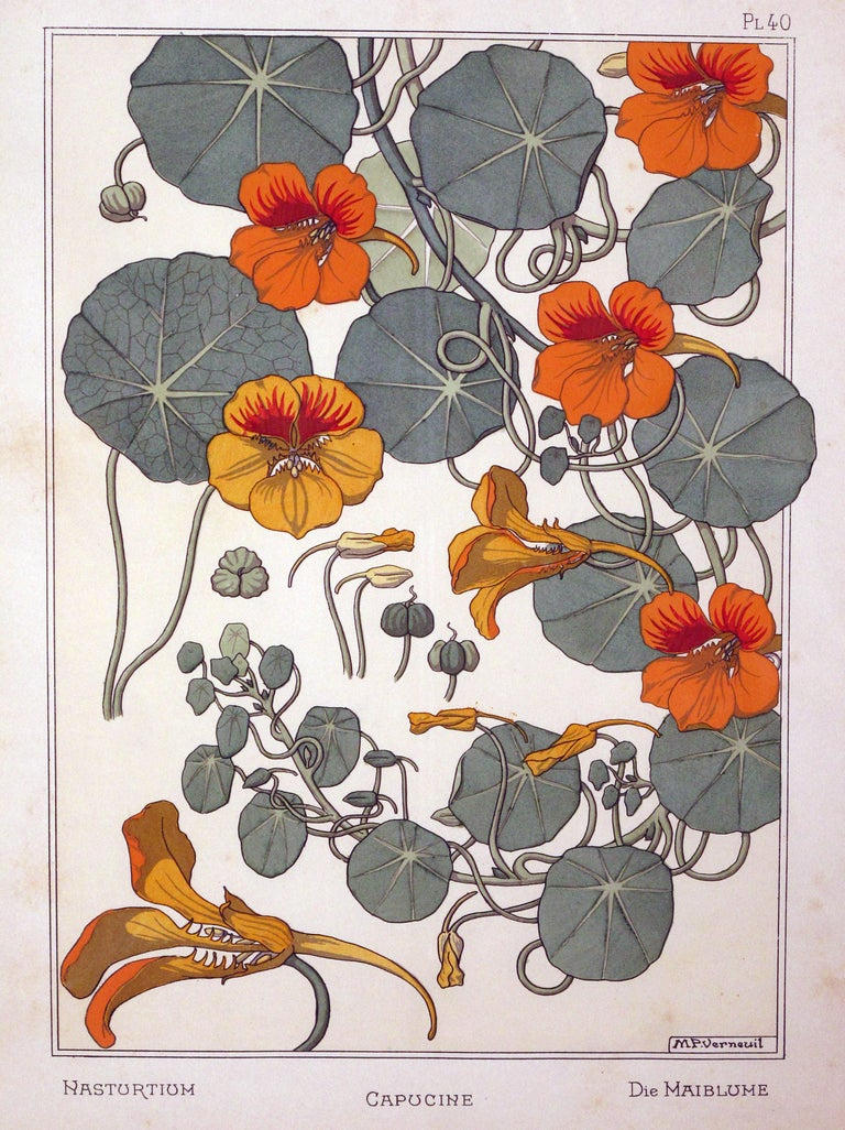 Set of Three French Art Nouveau Chromolithographs of Nasturtiums & Sunflowers 2
