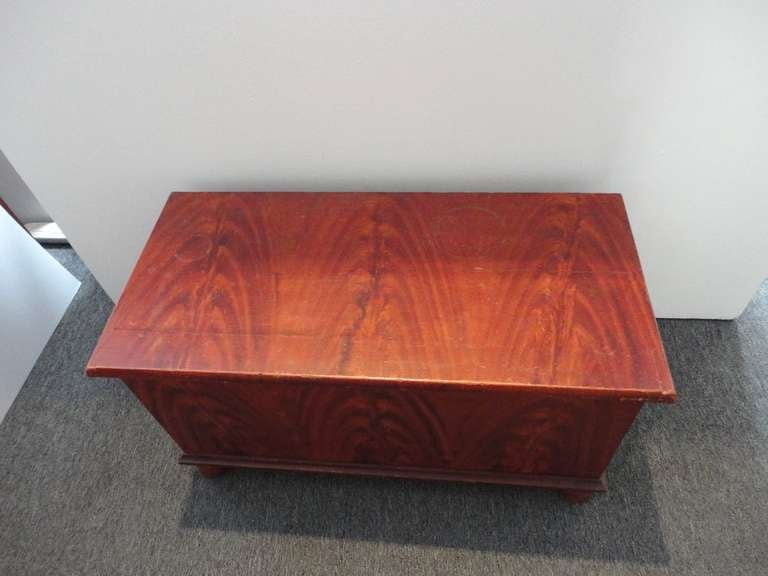 19thc Original Salmon & Decorated Pennsylvania Blanket  Chest In Excellent Condition For Sale In Los Angeles, CA