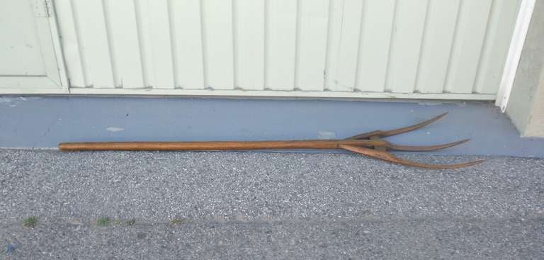 19thc Hickory Hay Fork From New England For Sale 1