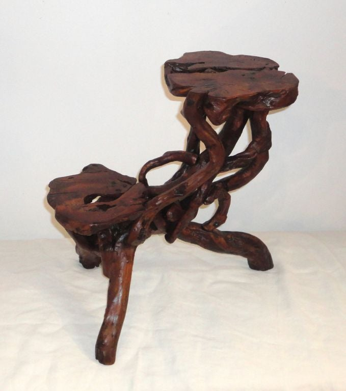 Early 20th Century Root and Twig Tabletop Plant Stand 3
