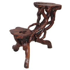 Early 20th Century Root and Twig Tabletop Plant Stand