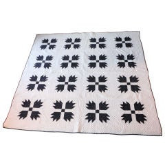 19thc Bear Paw Pattern Quilt From Pennsylvania